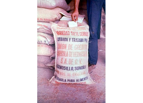 8-Poison-Grain-Disaster–Iraq-1971